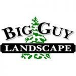 Big Guy Landscape