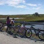 Idle Times Bike Shop