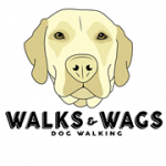 Walks & Wags Cape Cod