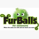 FurBalls Pet Grooming