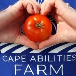 Cape Abilities Farm