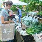 Wellfleet Farmers Market